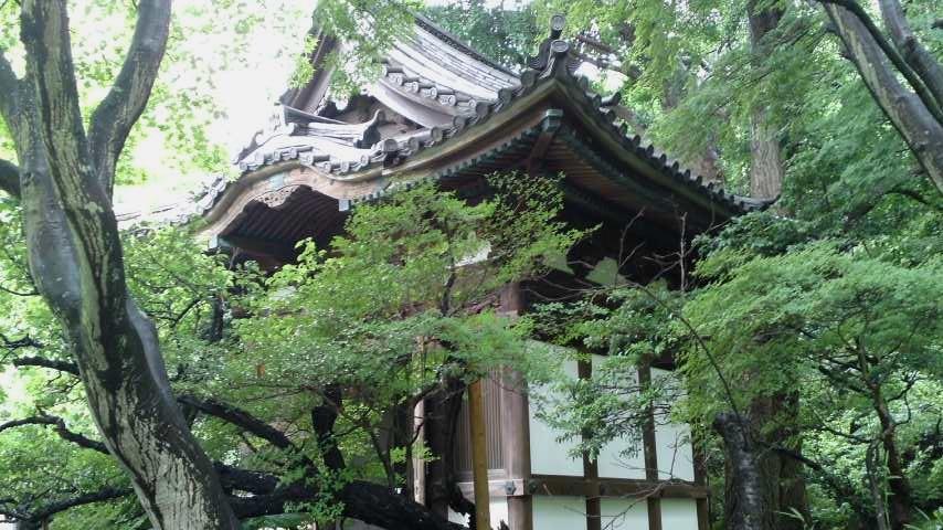 三渓園 旧天瑞寺寿塔覆堂.jpg
