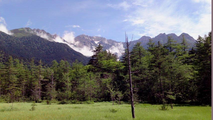 上高地 奥穂高岳と湿原.jpg