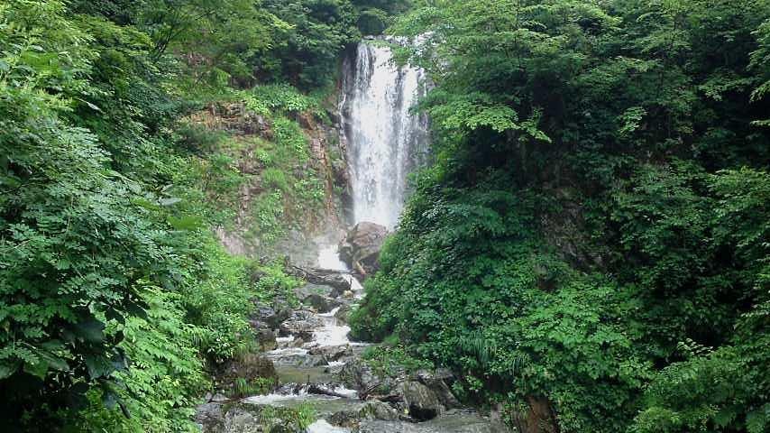 白川郷~種蔵へ向かう途中の滝.jpg