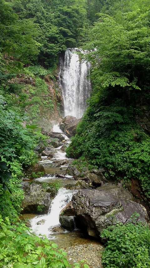 白川郷~種蔵へ向かう途中の滝2.jpg