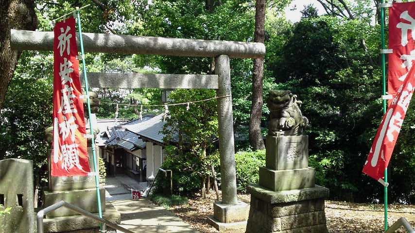 細山神明社 参道と狛犬.jpg