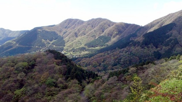 箱根の山は天下の剣.jpg