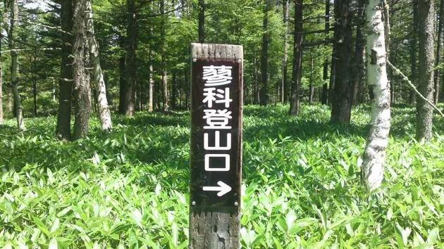 蓼科山 ロープウェイ後の入山開始口.jpg