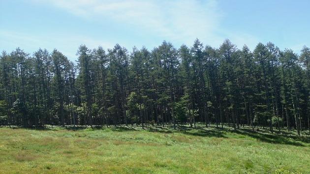 蓼科山ロープウェイから見た風景.jpg