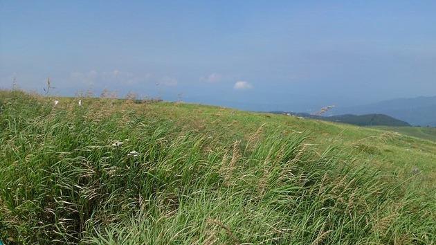 車山高原 草原.jpg
